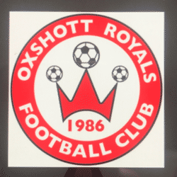 Oxshott Royals U9s Lions team badge