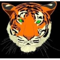Parklands Tigers Black team badge