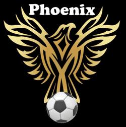 Phoenix FC - Divison 2 team badge