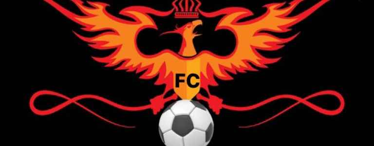 Phoenix FC - Divison 2 team photo