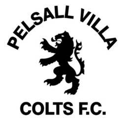 PVCFC LIONS team badge
