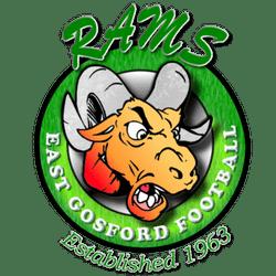 Rams 45b's team badge