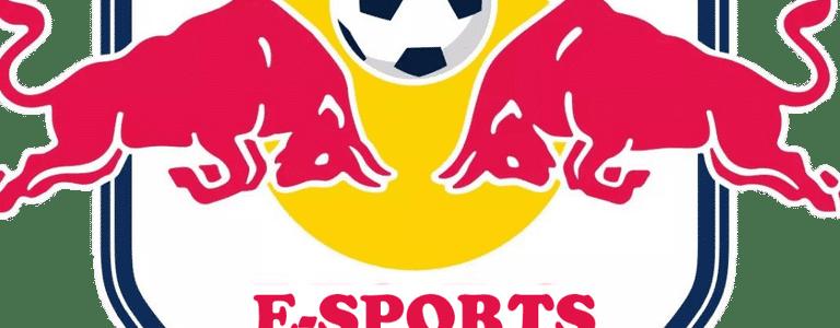 Redbull E-Sports team photo