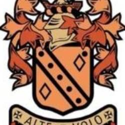 Roach Dynamos Green RD62 team badge