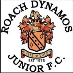 Roach Dynamos Orange RD61 team badge