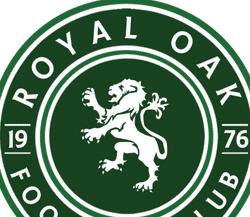 ROFC 2013 Boys team badge