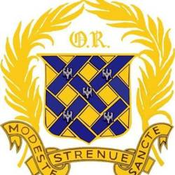 Ruts Youth FC U14 Blues team badge