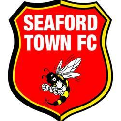 Seaford Town Youth U7 - Football team badge