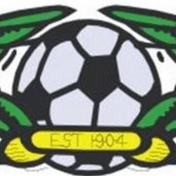 Shevington Under 11's team badge