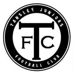 Tansley Juniors U8 team badge