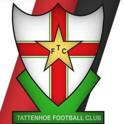 Tattenhoe Reds team badge