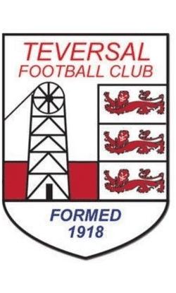Teversal FC Sunday U12 team badge
