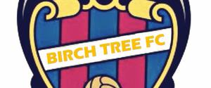 The Birch Tree fc