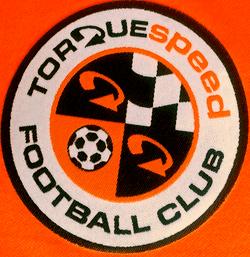 Torquespeed Youth Football Club 'eagles' team badge