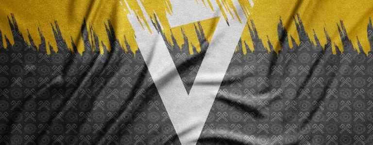 Viking FC team photo
