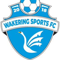 Wakering Sports - Division Two team badge