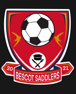 Walsall Mvf 11s team badge