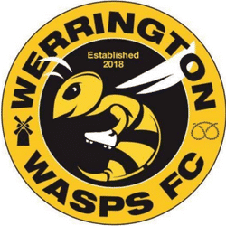 Werrington Wasps Yellows U7s team badge