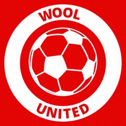 Wool Utd 1sts team badge