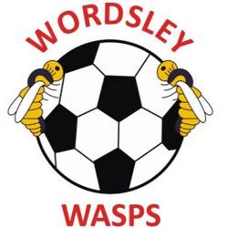 Wordsley Wasps FC team badge