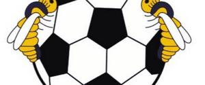 Wordsley Wasps FC