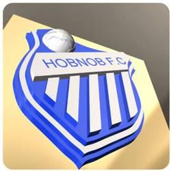 WS Hobnob FC team badge